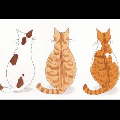 猫背の弊害