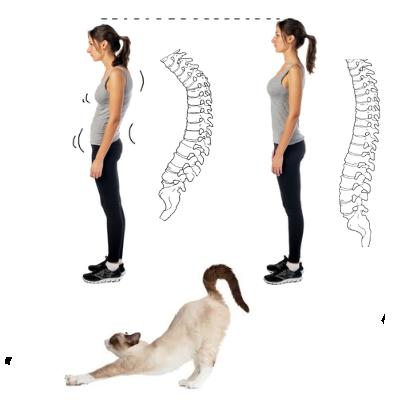 猫背が蔓延