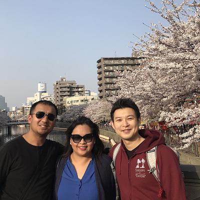 大岡川沿いの満開の桜