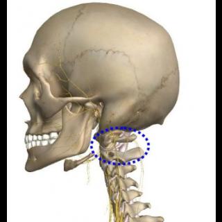 上部頸椎がひっかかる